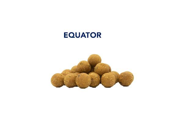 boiles equator