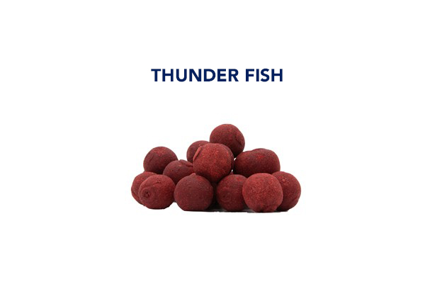 boiles thunder-fish